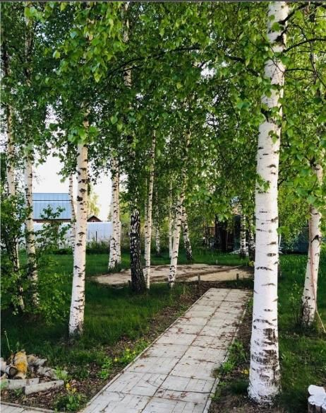 Продажа дома Истра, цена 458000 рублей, 2020 год объявление №435000 на megabaz.ru