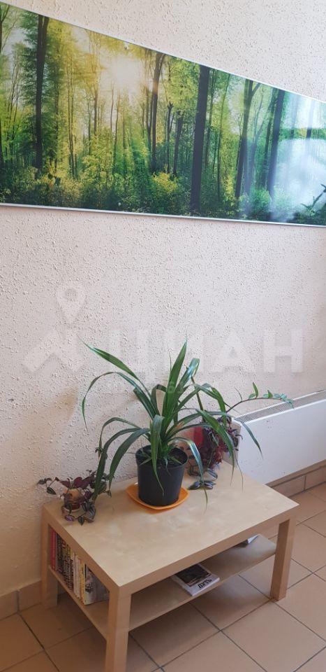 Аренда однокомнатной квартиры Мытищи, метро Маяковская, улица Воронина 6, цена 30000 рублей, 2020 год объявление №1106671 на megabaz.ru
