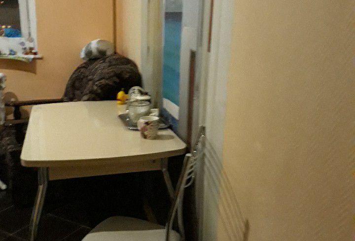 Аренда комнаты Москва, метро Площадь Революции, цена 18000 рублей, 2020 год объявление №1050364 на megabaz.ru