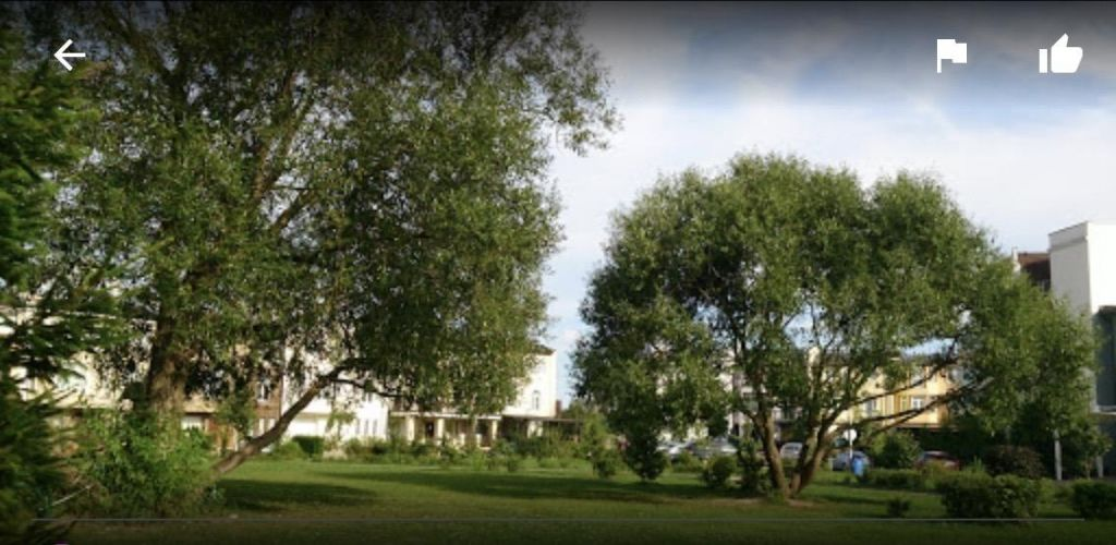 Аренда студии деревня Гаврилково, улица 2-й Квартал, цена 32000 рублей, 2020 год объявление №1010519 на megabaz.ru