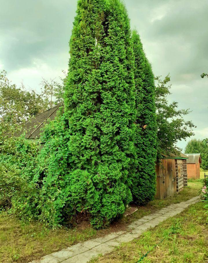 Продажа дома село Дединово, улица Кислова, цена 1600000 рублей, 2021 год объявление №474408 на megabaz.ru