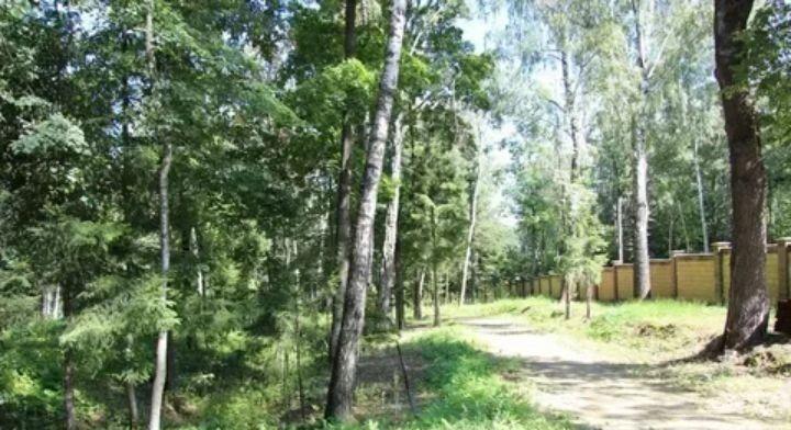 Продажа дома деревня Заболотье, цена 220000 рублей, 2020 год объявление №399326 на megabaz.ru