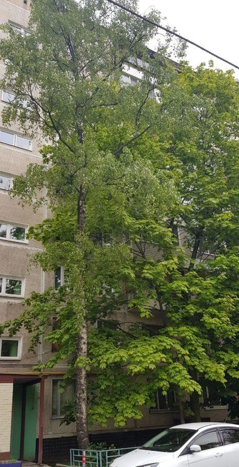 Продажа двухкомнатной квартиры Москва, метро Южная, Чертановская улица 21к1, цена 8200000 рублей, 2021 год объявление №400209 на megabaz.ru