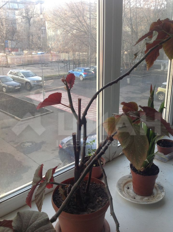 Продажа трёхкомнатной квартиры Москва, метро Новокузнецкая, Озерковский переулок 9, цена 23800000 рублей, 2020 год объявление №407500 на megabaz.ru