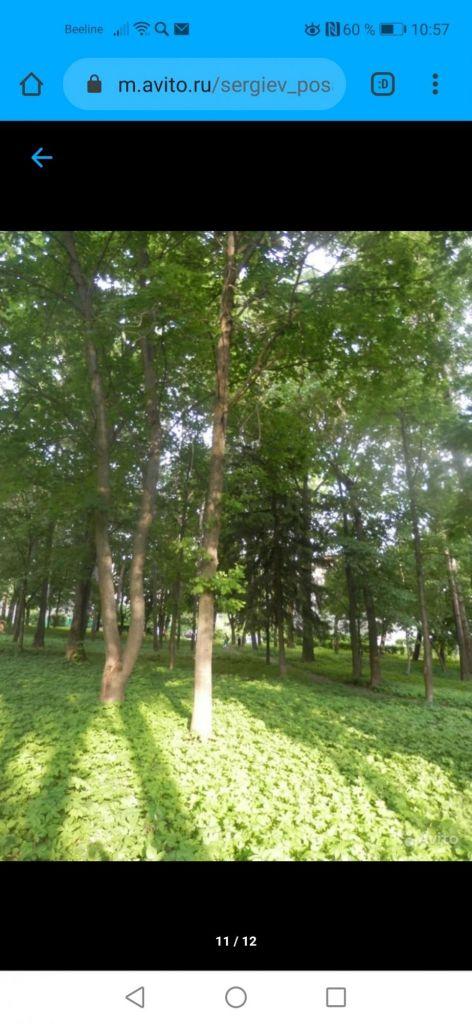 Продажа двухкомнатной квартиры поселок Лоза, цена 1550000 рублей, 2020 год объявление №408870 на megabaz.ru