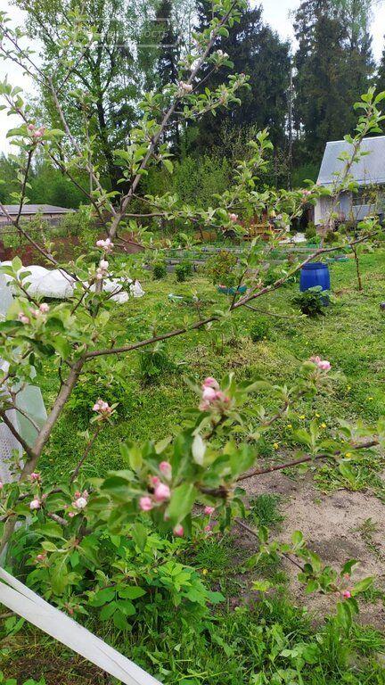 Продажа дома садовое товарищество Дружба, цена 399000 рублей, 2020 год объявление №411227 на megabaz.ru