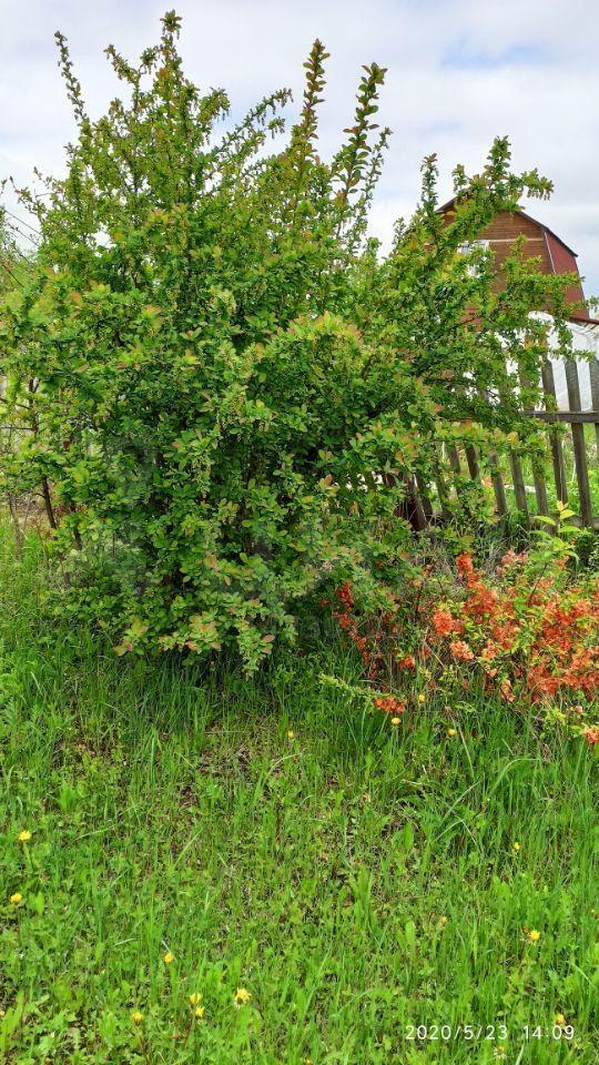Продажа дома садовое товарищество Рассвет, цена 1000000 рублей, 2020 год объявление №445333 на megabaz.ru