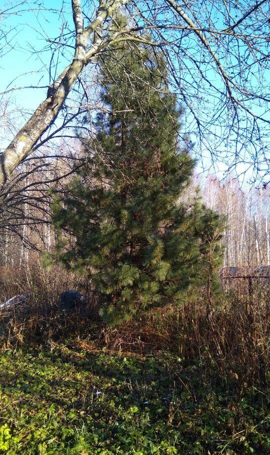 Продажа дома поселок Авсюнино, цена 250000 рублей, 2020 год объявление №377910 на megabaz.ru