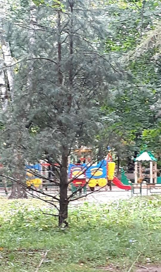 Аренда двухкомнатной квартиры поселок Архангельское, цена 35000 рублей, 2020 год объявление №1209113 на megabaz.ru