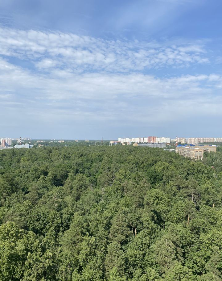 Аренда трёхкомнатной квартиры деревня Павлино, цена 30000 рублей, 2020 год объявление №1095867 на megabaz.ru