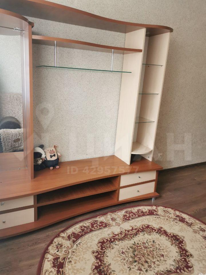 Аренда однокомнатной квартиры деревня Солманово, Елисейская улица 2, цена 22000 рублей, 2020 год объявление №1100283 на megabaz.ru
