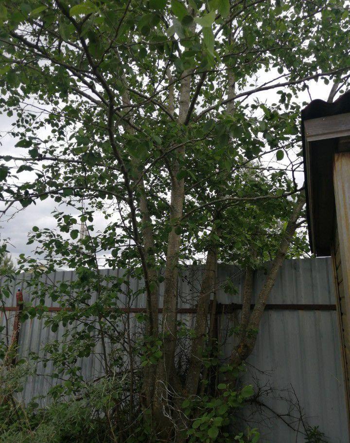 Продажа дома СНТ Ручеёк, цена 490000 рублей, 2020 год объявление №430673 на megabaz.ru