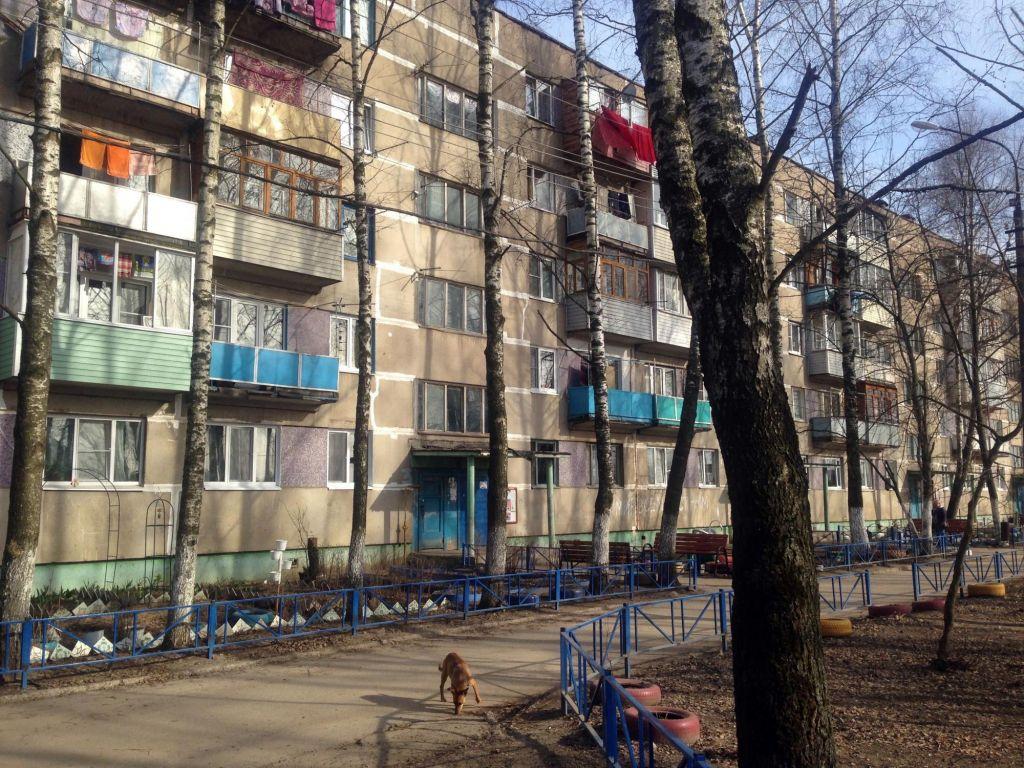 Продажа двухкомнатной квартиры деревня Большое Буньково, цена 2400000 рублей, 2020 год объявление №478003 на megabaz.ru