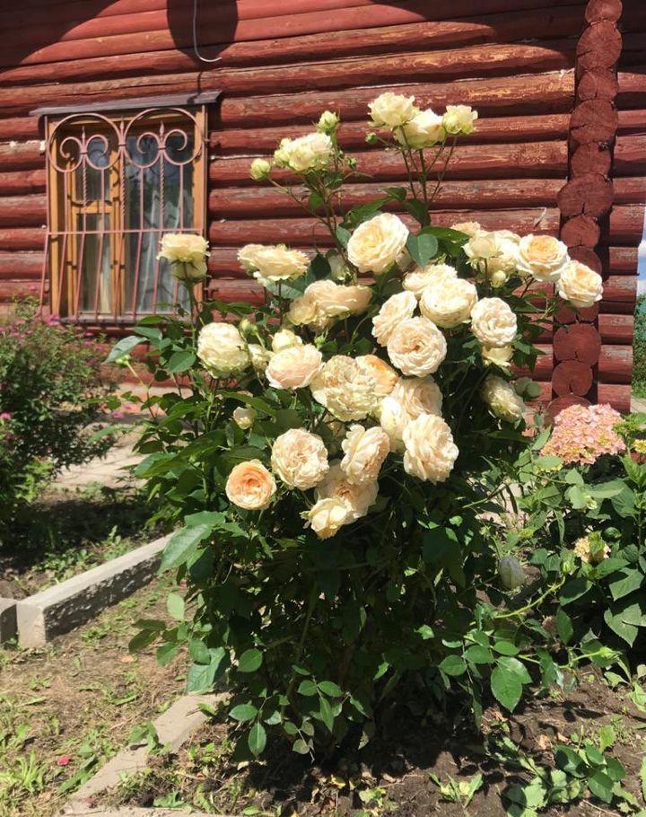 Продажа дома деревня Заболотье, цена 6300000 рублей, 2020 год объявление №488360 на megabaz.ru