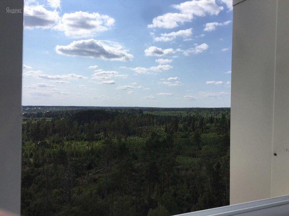 Аренда двухкомнатной квартиры поселок Горки-10, цена 37000 рублей, 2020 год объявление №1107704 на megabaz.ru