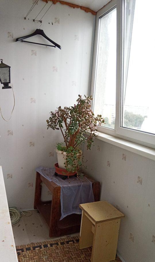 Продажа трёхкомнатной квартиры Черноголовка, Школьный бульвар 16, цена 6300000 рублей, 2020 год объявление №485997 на megabaz.ru
