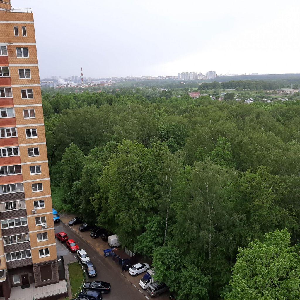 Продажа студии деревня Павлино, цена 3700000 рублей, 2020 год объявление №447562 на megabaz.ru