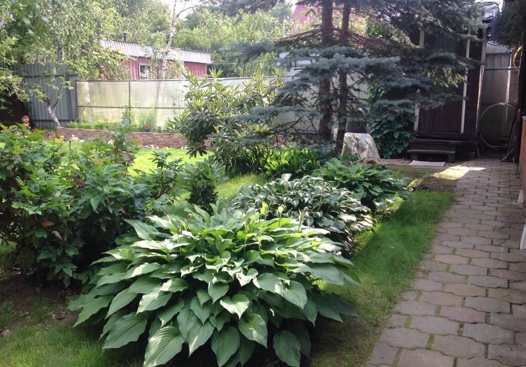 Продажа дома садовое товарищество Строитель, цена 5000000 рублей, 2020 год объявление №410557 на megabaz.ru