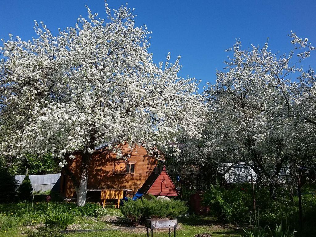 Продажа дома садовое товарищество Березка, цена 3399000 рублей, 2020 год объявление №437081 на megabaz.ru