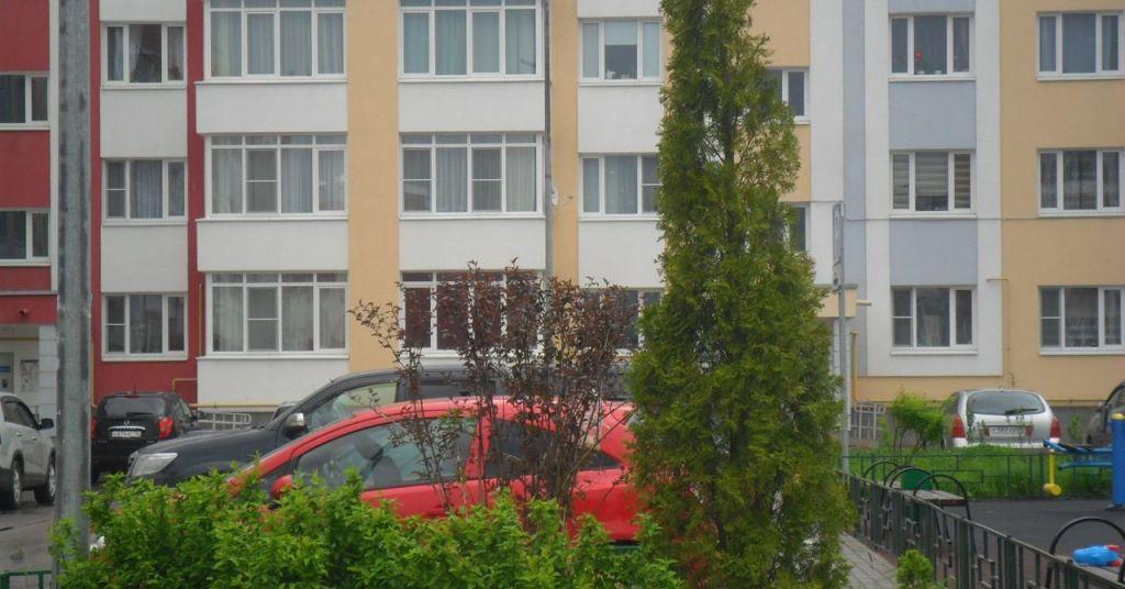 Продажа однокомнатной квартиры деревня Чёрная, Садовая улица 16к1, цена 3990000 рублей, 2020 год объявление №413063 на megabaz.ru