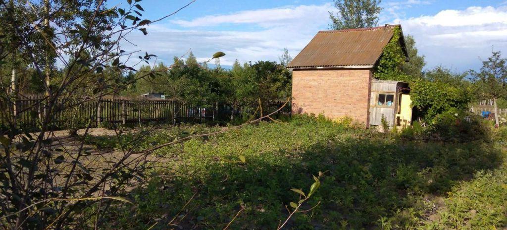 Продажа дома деревня Новосёлки, цена 300000 рублей, 2021 год объявление №460129 на megabaz.ru