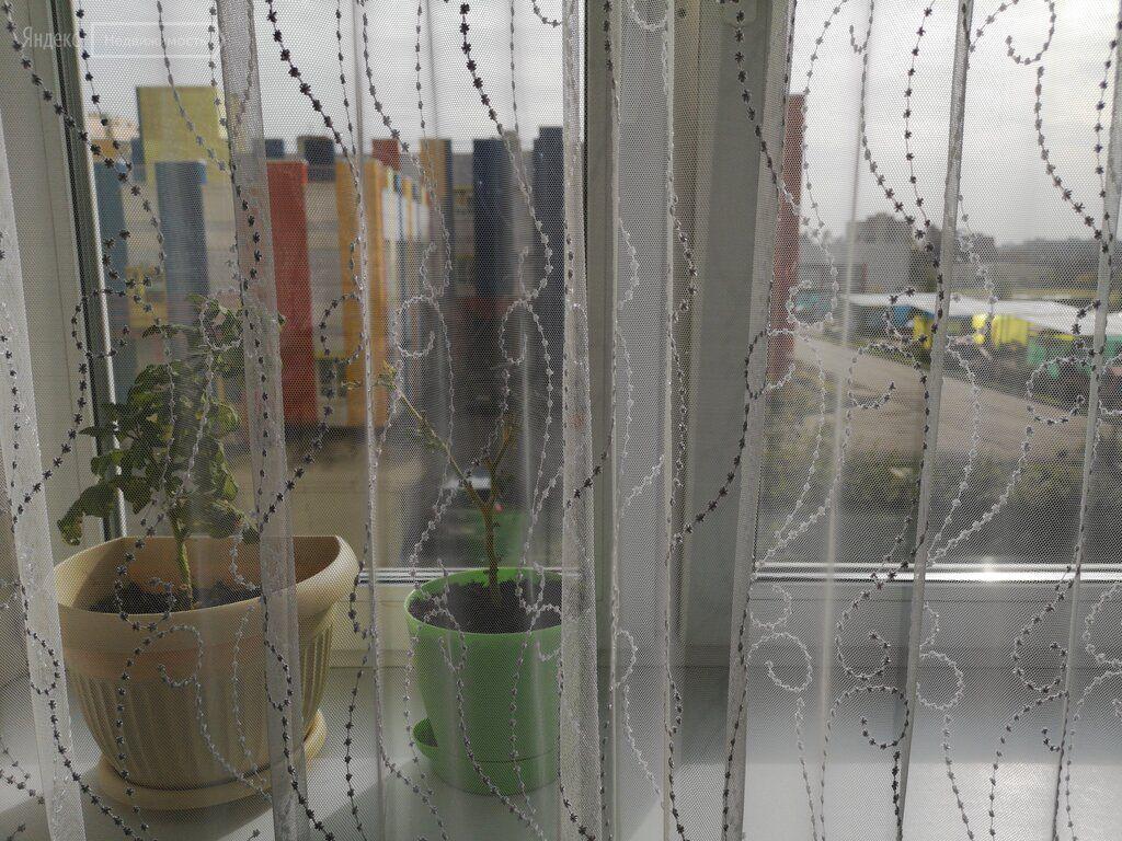 Аренда однокомнатной квартиры Пушкино, метро Медведково, цена 20000 рублей, 2020 год объявление №1229122 на megabaz.ru