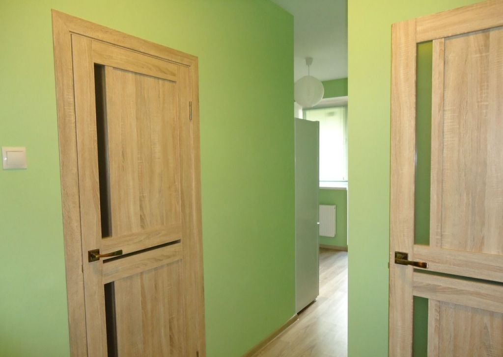 Продажа однокомнатной квартиры деревня Исаково, цена 4300000 рублей, 2021 год объявление №464851 на megabaz.ru