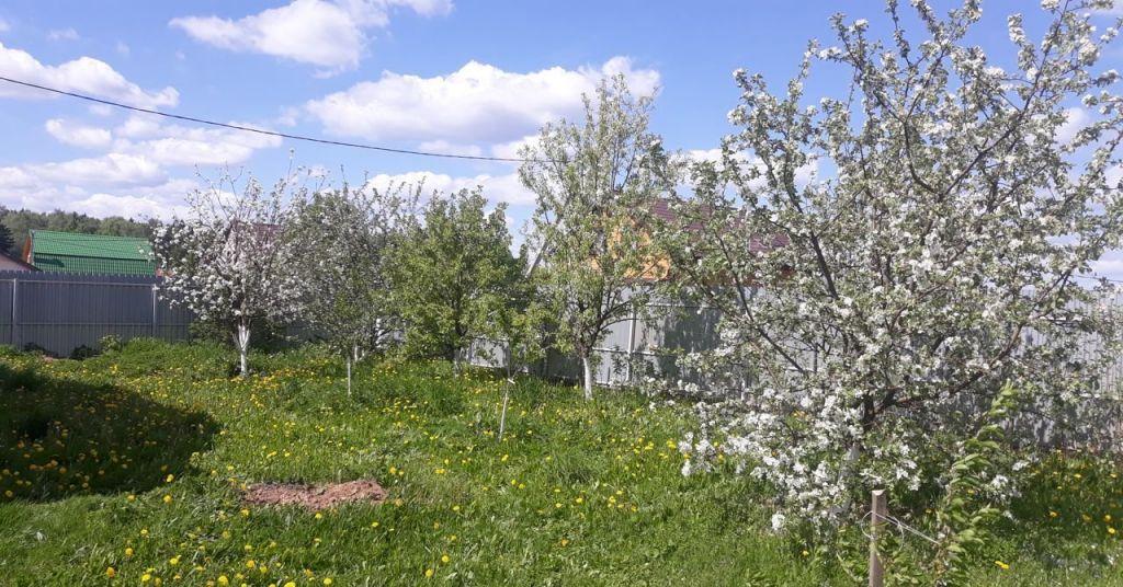 Продажа дома деревня Пешки, цена 6000000 рублей, 2020 год объявление №444500 на megabaz.ru
