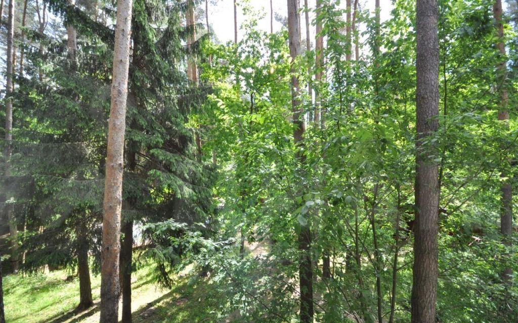 Продажа дома деревня Новоглаголево, цена 6990000 рублей, 2020 год объявление №467332 на megabaz.ru