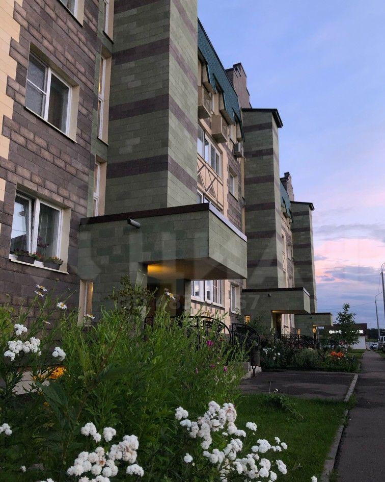 Аренда однокомнатной квартиры деревня Солманово, Лазурная улица 16, цена 21000 рублей, 2020 год объявление №1155419 на megabaz.ru