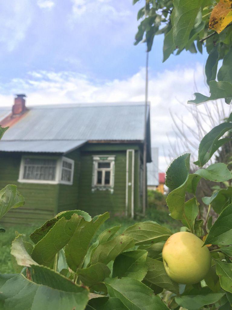 Продажа дома село Остров, цена 1500000 рублей, 2021 год объявление №408513 на megabaz.ru