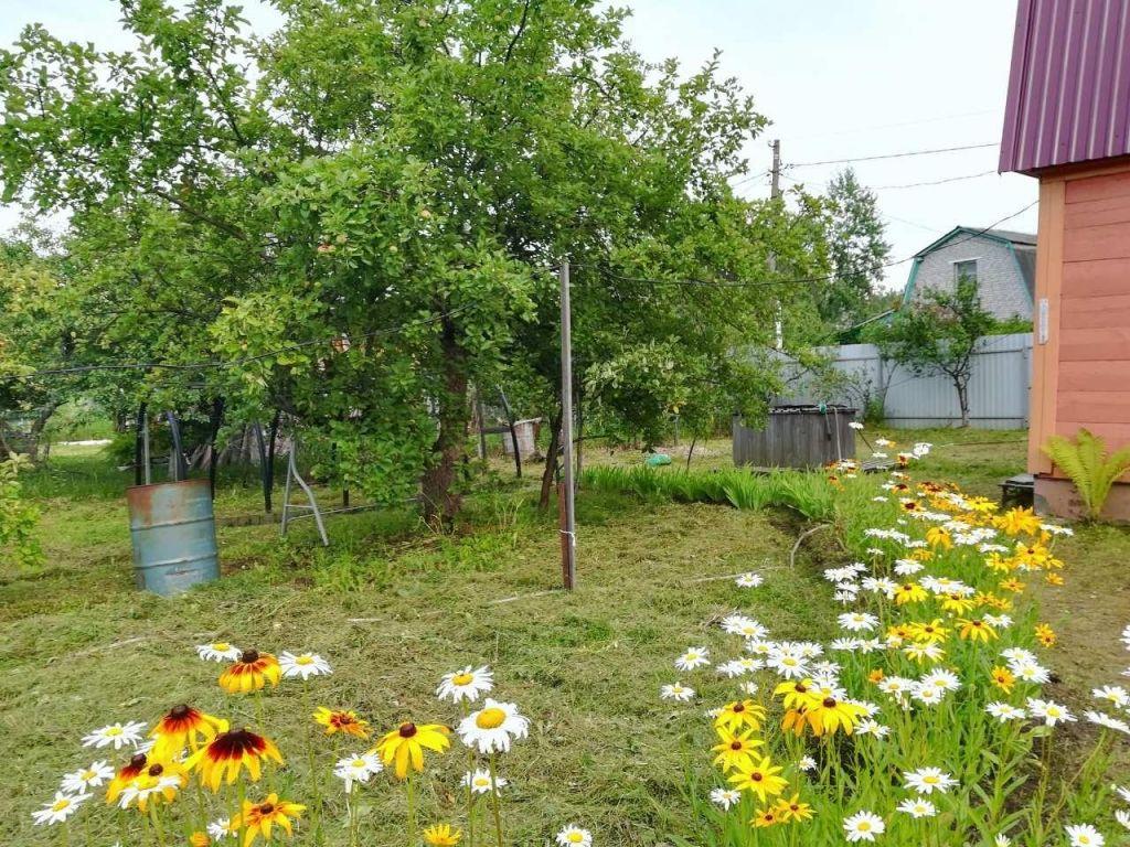 Продажа дома посёлок Новый Снопок, Центральная улица 29А, цена 950000 рублей, 2020 год объявление №449376 на megabaz.ru