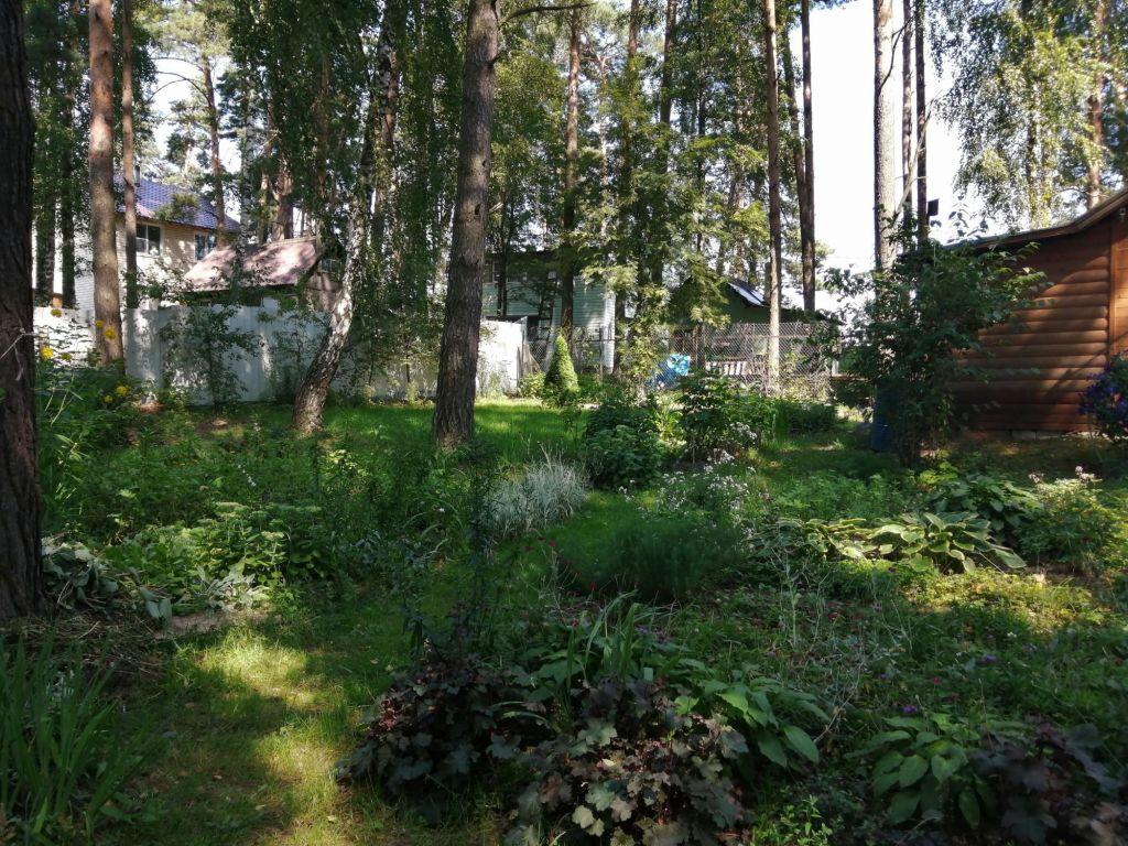 Продажа дома деревня Манушкино, Сосновая улица 46, цена 1300000 рублей, 2020 год объявление №477937 на megabaz.ru