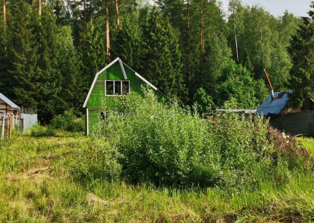Продажа дома СНТ Заозёрный, Заозёрная улица, цена 380000 рублей, 2021 год объявление №475944 на megabaz.ru