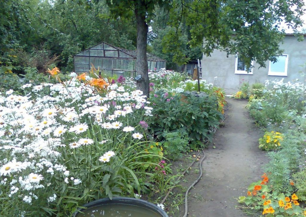 Продажа дома садовое товарищество Мичуринец, 10-я линия 4, цена 650000 рублей, 2021 год объявление №508123 на megabaz.ru