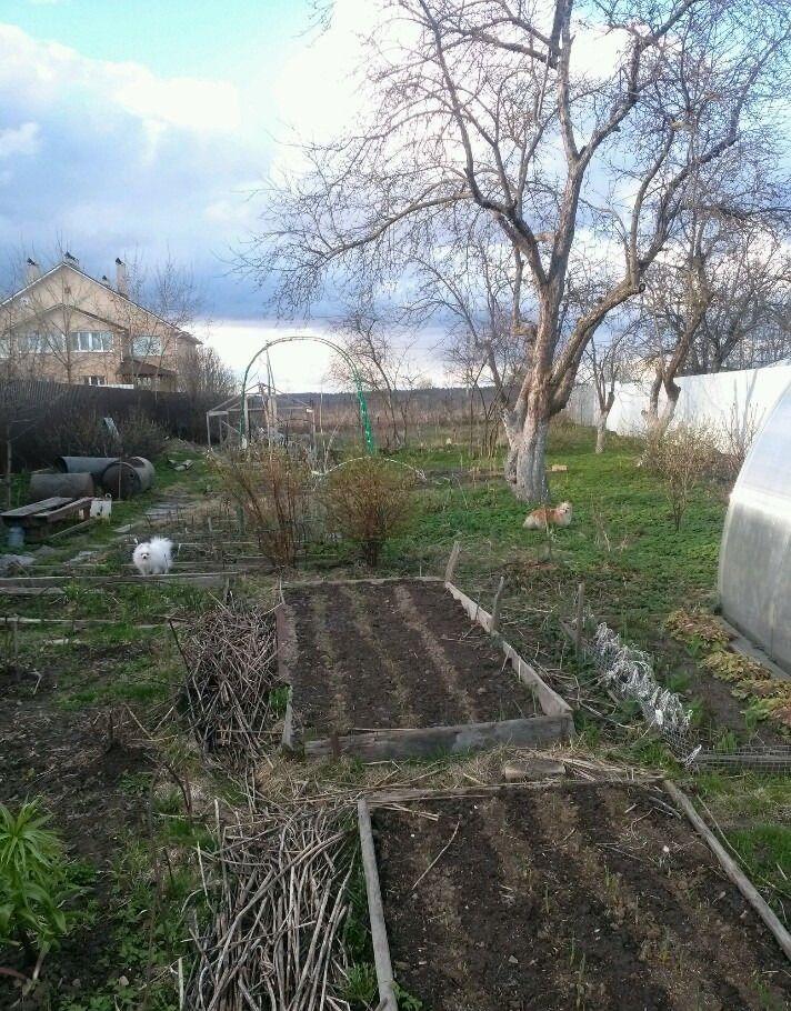 Продажа дома деревня Никулино, цена 5500000 рублей, 2021 год объявление №486897 на megabaz.ru