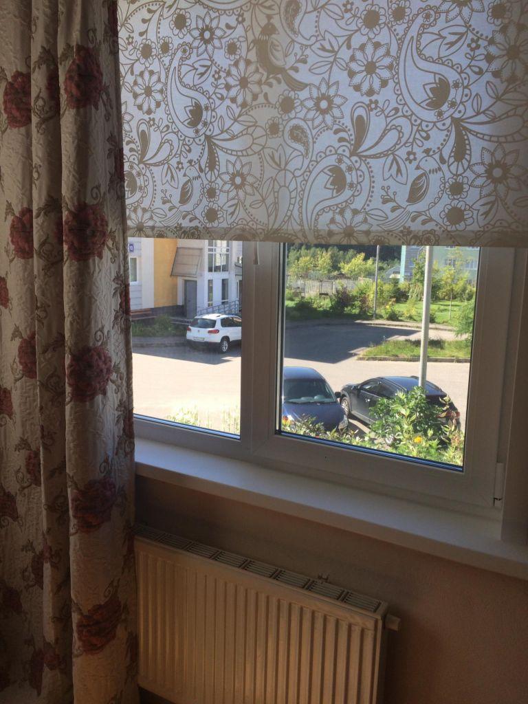 Аренда однокомнатной квартиры деревня Чёрная, Европейская улица, цена 23000 рублей, 2021 год объявление №1154432 на megabaz.ru