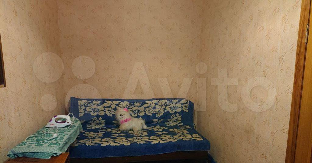 Аренда двухкомнатной квартиры поселок совхоза Останкино, Дорожная улица 27, цена 27000 рублей, 2021 год объявление №1364174 на megabaz.ru