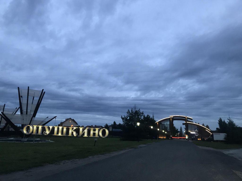 Продажа дома коттеджный поселок Опушкино, цена 17440000 рублей, 2021 год объявление №464603 на megabaz.ru