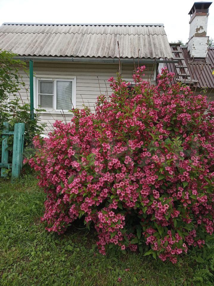 Продажа дома поселок Авсюнино, Комсомольская улица, цена 4100000 рублей, 2021 год объявление №496143 на megabaz.ru