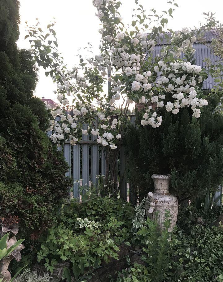 Продажа дома садовое товарищество Дружба, цена 2650000 рублей, 2021 год объявление №497520 на megabaz.ru