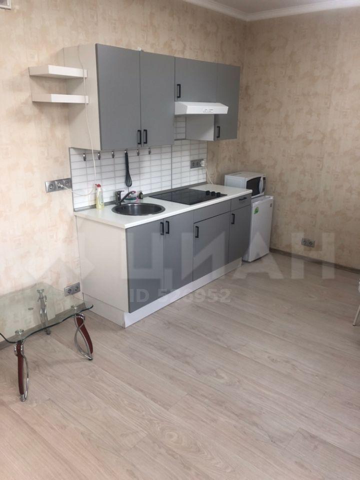 Аренда однокомнатной квартиры деревня Подолино, Дачная улица 9, цена 23000 рублей, 2020 год объявление №1209546 на megabaz.ru