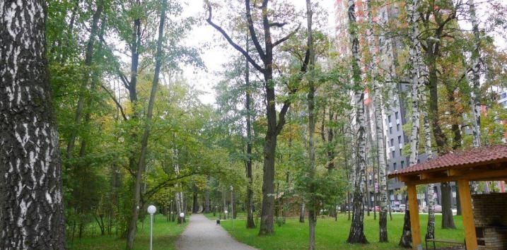 Продажа студии деревня Подолино, улица Некрасова 6, цена 4520000 рублей, 2020 год объявление №473558 на megabaz.ru