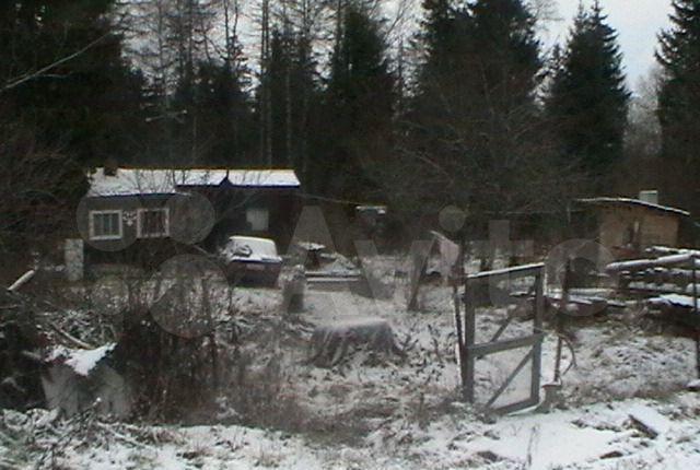 Продажа дома садовое товарищество Лесная поляна, цена 200000 рублей, 2021 год объявление №553116 на megabaz.ru