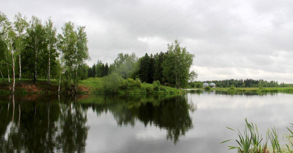 Продажа двухкомнатной квартиры Лобня, цена 5000000 рублей, 2020 год объявление №507410 на megabaz.ru
