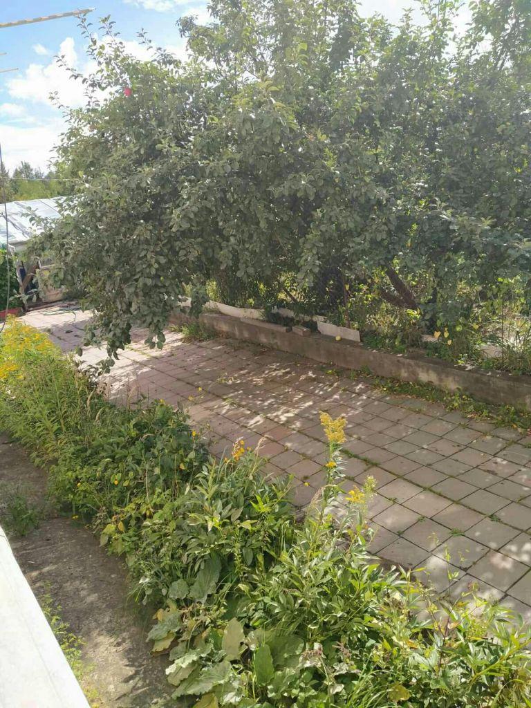 Аренда дома село Софьино, цена 25000 рублей, 2020 год объявление №1190864 на megabaz.ru