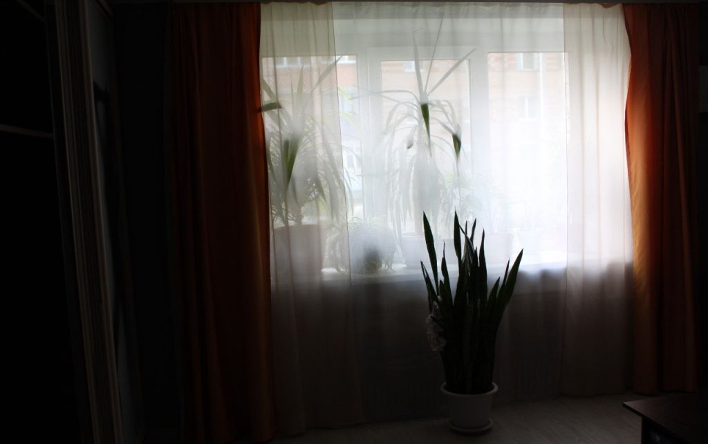 Аренда двухкомнатной квартиры поселок городского типа Деденево, Московское шоссе 3Б, цена 20000 рублей, 2021 год объявление №1032904 на megabaz.ru