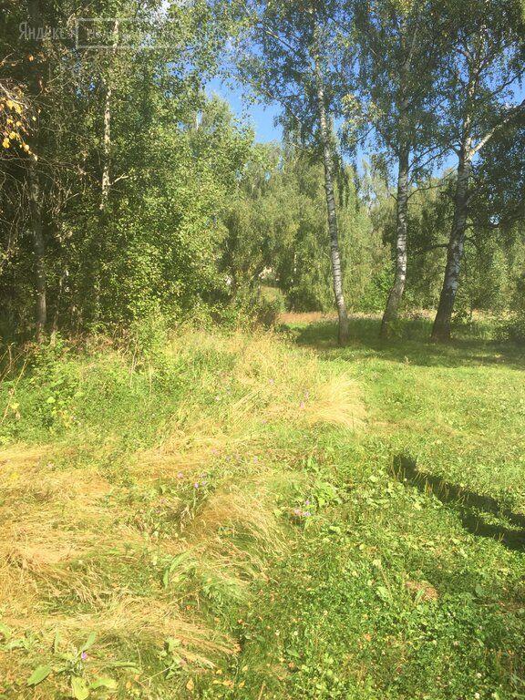 Продажа дома деревня Васькино, цена 700000 рублей, 2021 год объявление №534666 на megabaz.ru
