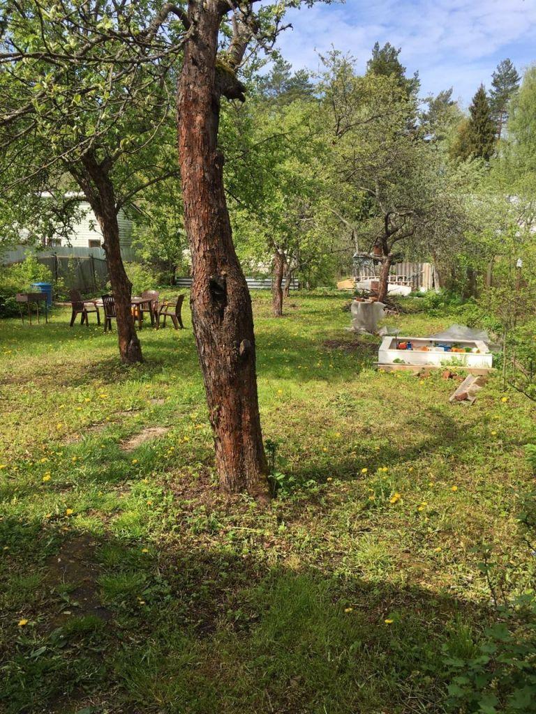 Продажа дома садовое товарищество Лесная поляна, цена 3100000 рублей, 2021 год объявление №429485 на megabaz.ru