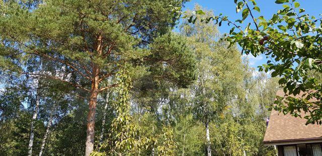 Продажа дома садовое некоммерческое товарищество Алешинские Сады, Объездная дорога, цена 6500000 рублей, 2021 год объявление №496147 на megabaz.ru